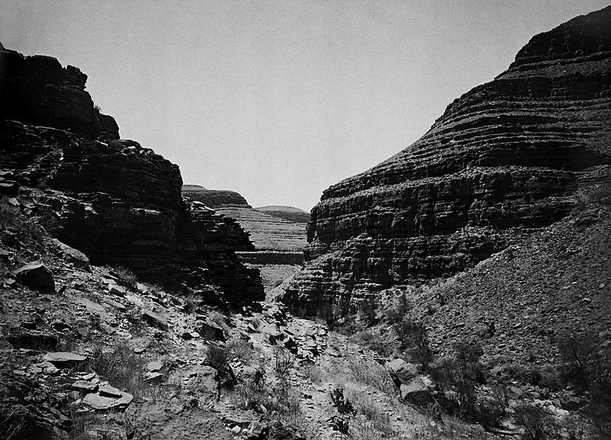 Zebra River 1 | 100 x 140cm | Namibia 2002