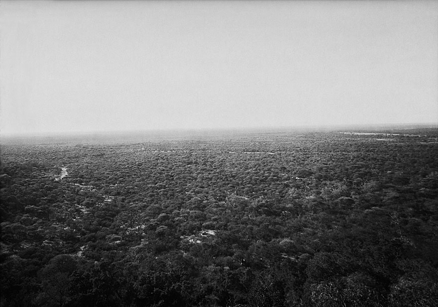 Waterberg Plateau 1 | 100 x1 40cm | Namibia 2003