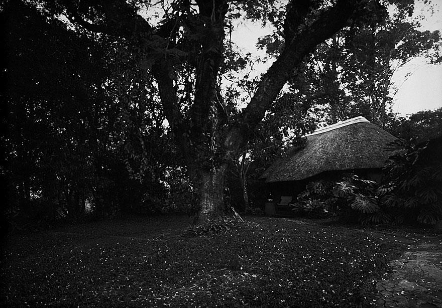 Mae`s Garden 4 | 100 x 130cm | Südafrika 2001