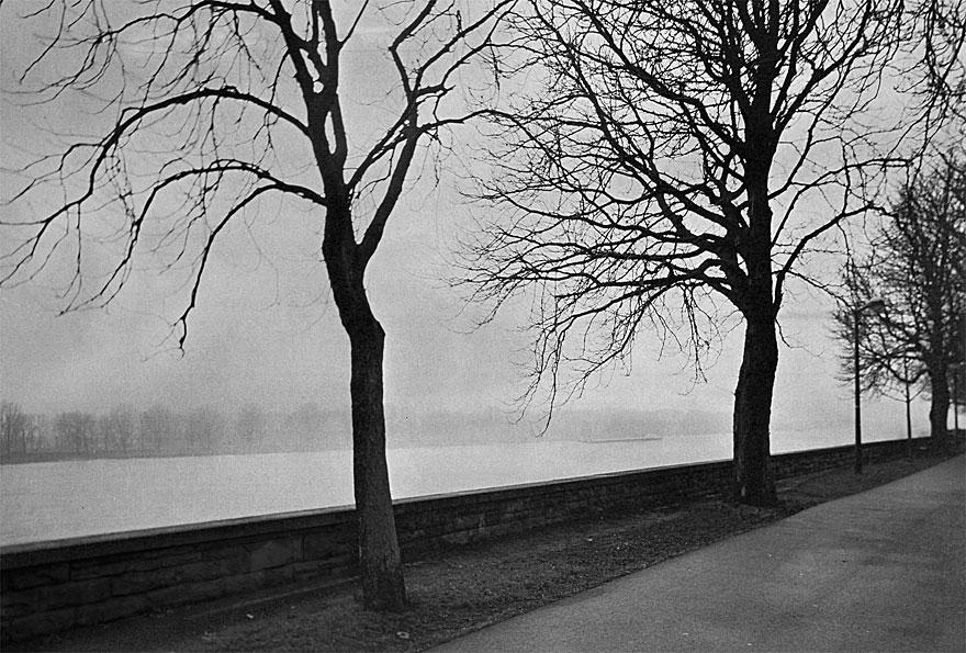 Rheinufer Düsseldorf 2 | 100 x 130cm | Deutschland  2013