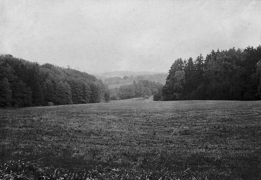 Odenwald 1 | 100 x 130cm | Deutschland 2011