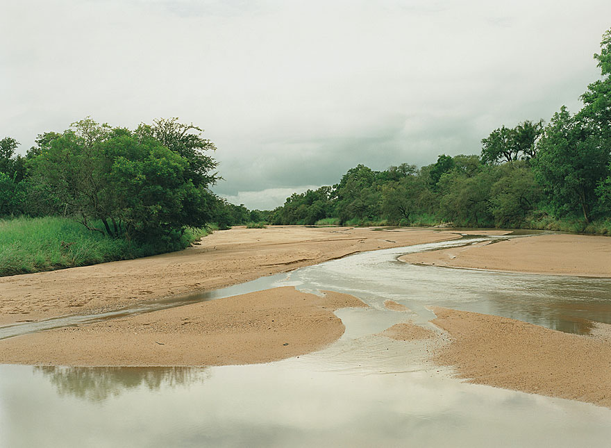 River | 130 x 200 cm | Timbavati 2001
