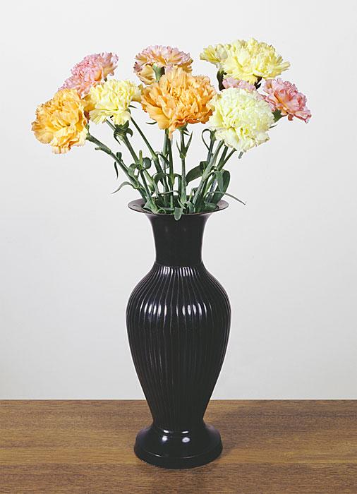 Flowers 6 | Nelken | 160 x 120 cm | 2007