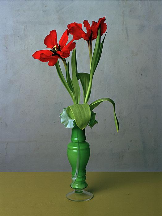 Flowers 7 | Tulpen | 240 x 180 cm | 1993