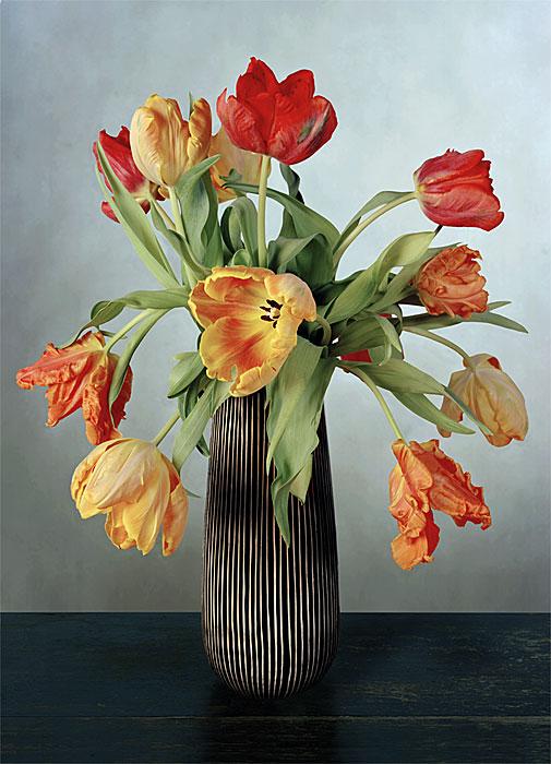 Flowers 10 | Tulpen | 240 x 180 cm | 2006
